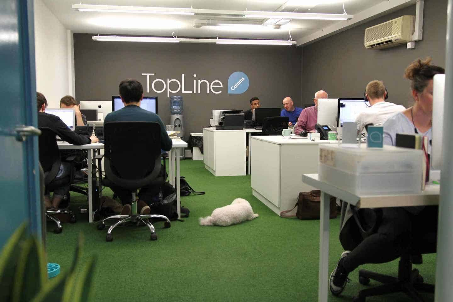 10 Top Tips for Your Taking Your Dog to Work in London from Topline Film -5