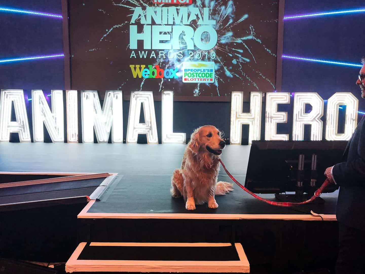 Animal Hero Awards 2019 - Claude on Stage