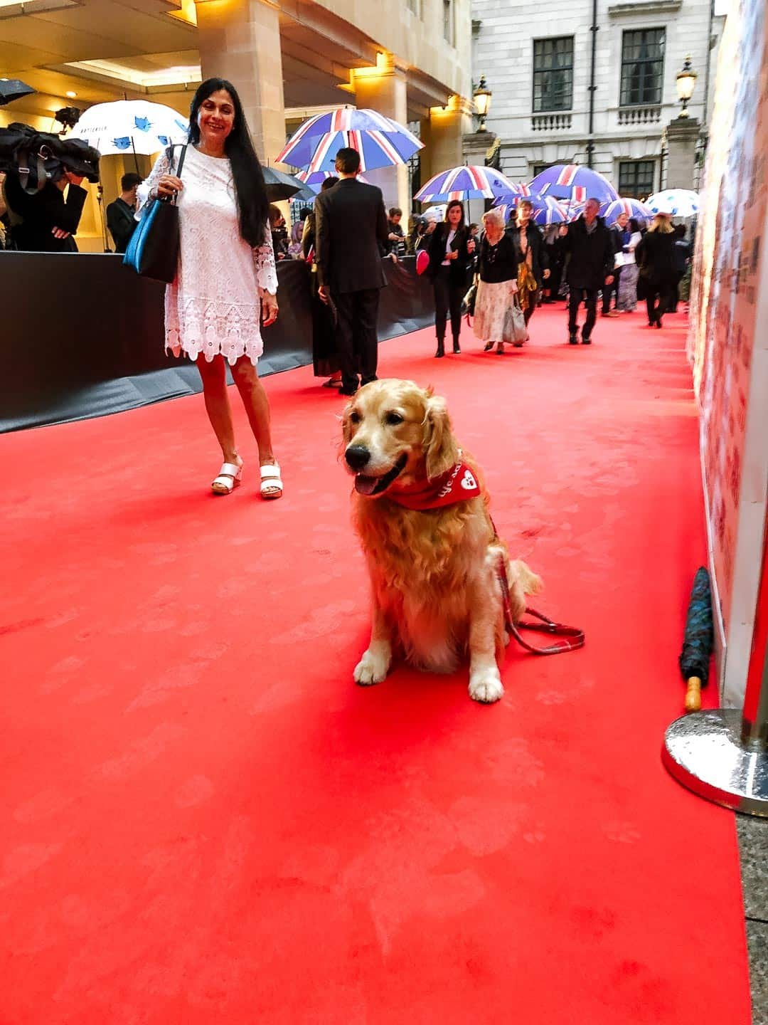 Arriving at the Animal Hero Awards 2019 - On The Red Carpet