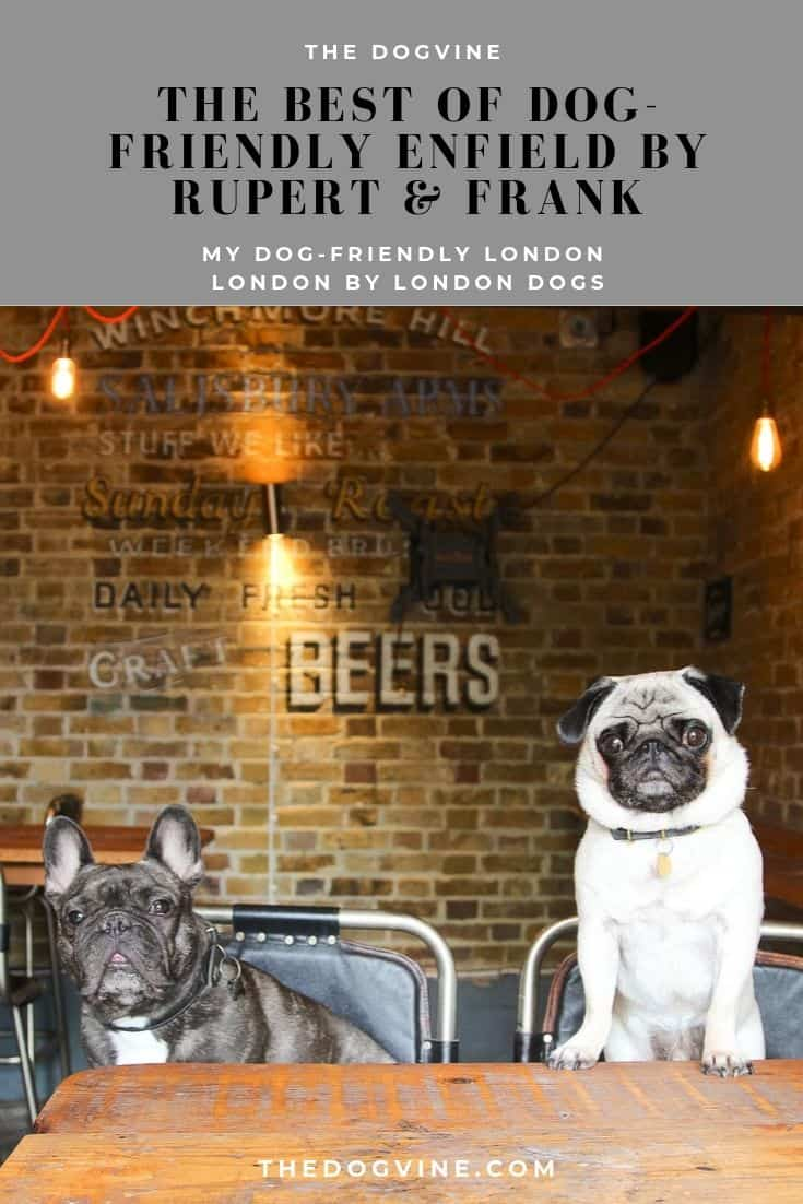 Best of Dog-friendly Enfield by Rupert and Frank from Pooches & Prams