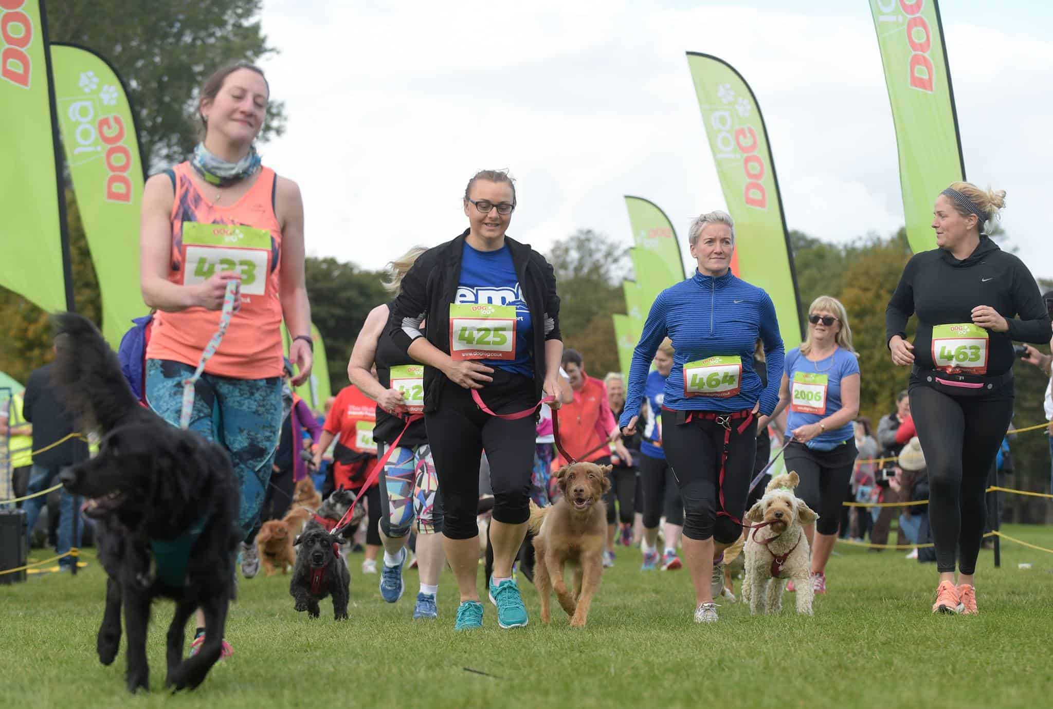 Dog Jog Crystal Palace 2019