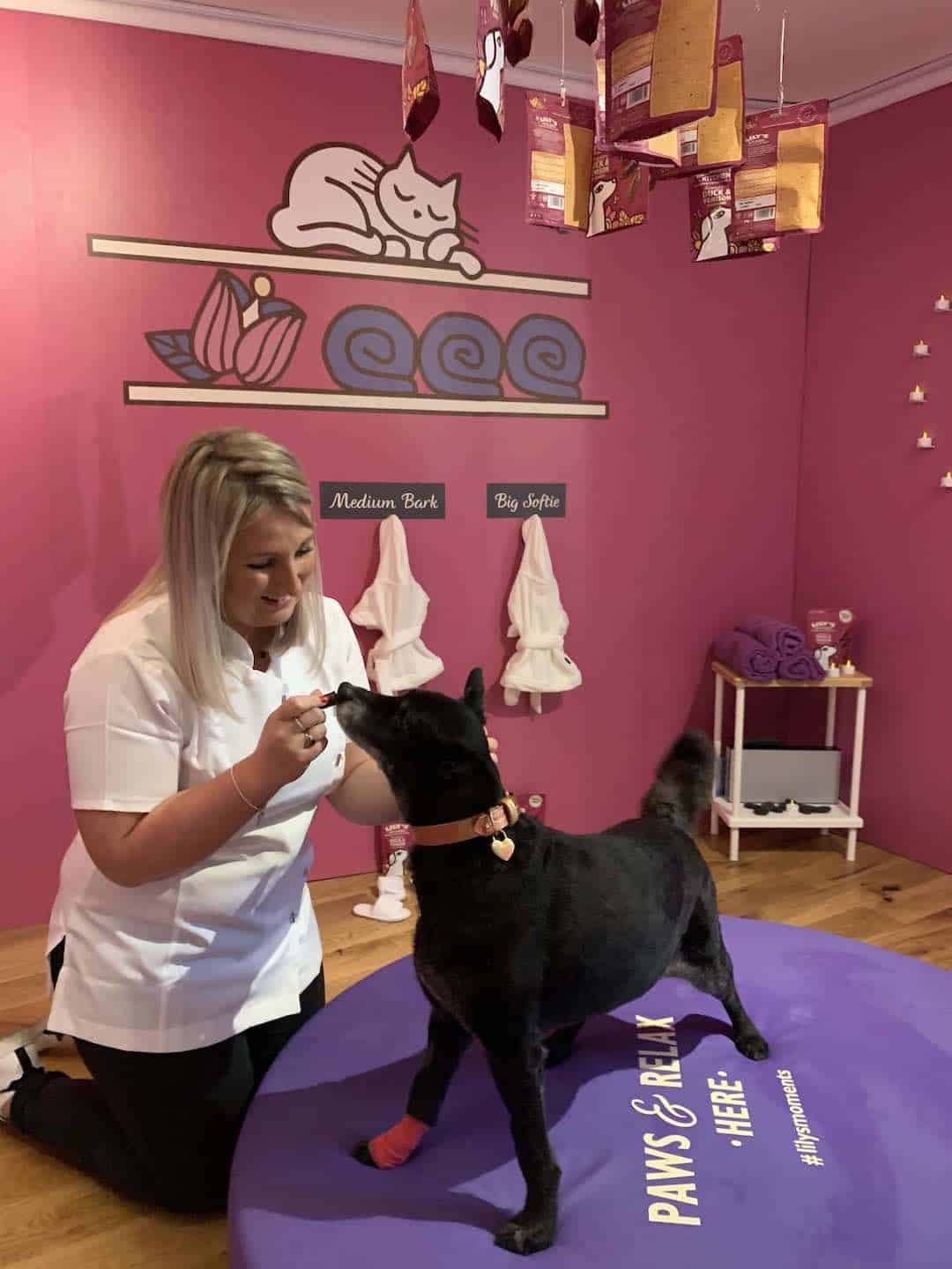 Lilys Kitchen Proper Treats Launch Dogs Dream House Of Treats 5