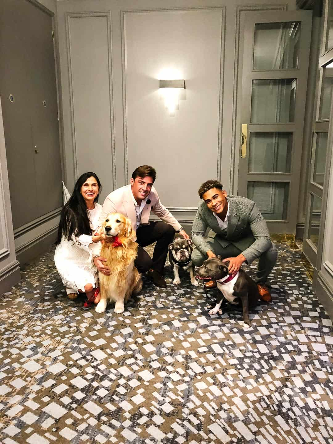 Love Island's Jordan Hames and Jack Fincham at the Animal Hero Awards 2019 with their dogs