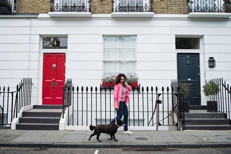 The Dogvine - Vuelio Best UK Pet Blogs 2019 List 5
