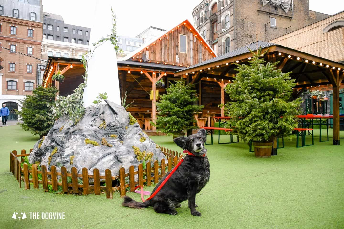 Dog-friendly Christmas Markets in London - Christmas at Flat Iron Square