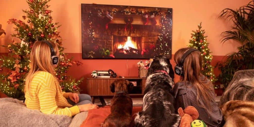 Dog-friendly John Lewis Festive Flicks With Samsung