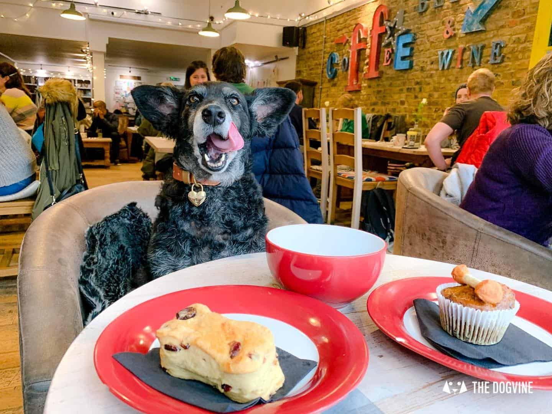 Dogs Love Wags N Tales Surbiton - Dog-friendly Pub Awards 28