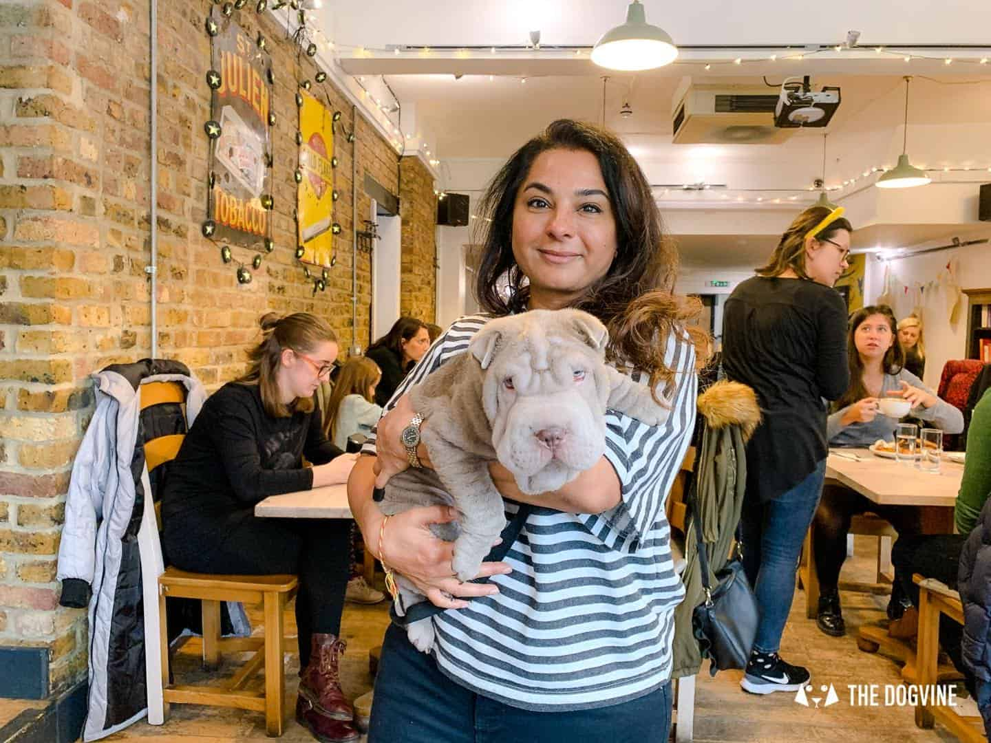 Dogs Love Wags N Tales Surbiton - Dog-friendly Pub Awards 32
