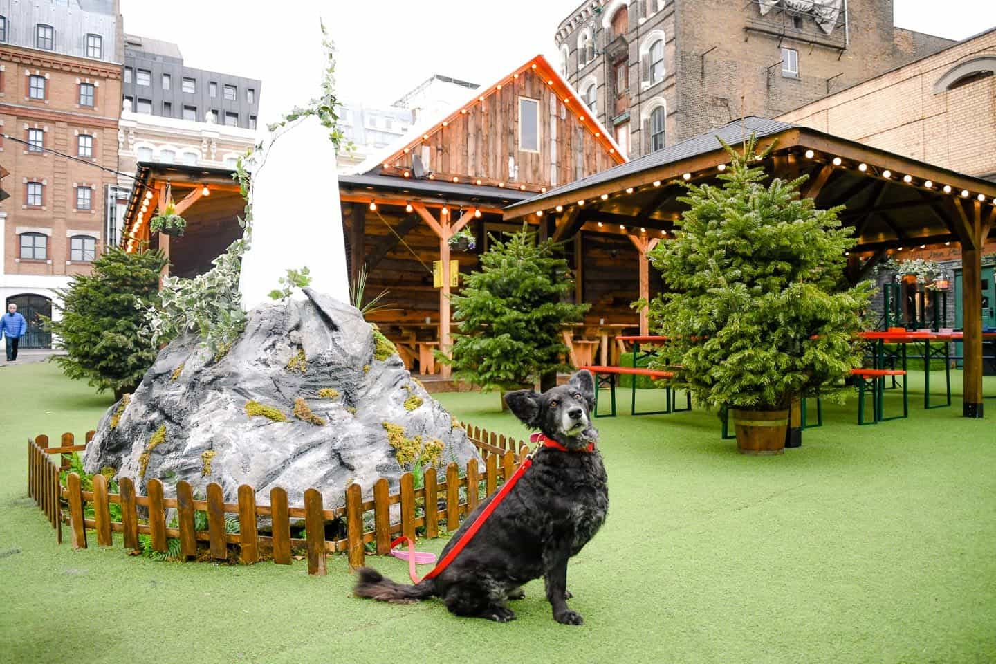 11 Dog-friendly Christmas Markets in London