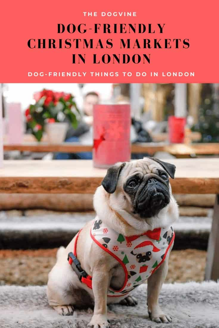 Guide to Dog-friendly Christmas Markets in London