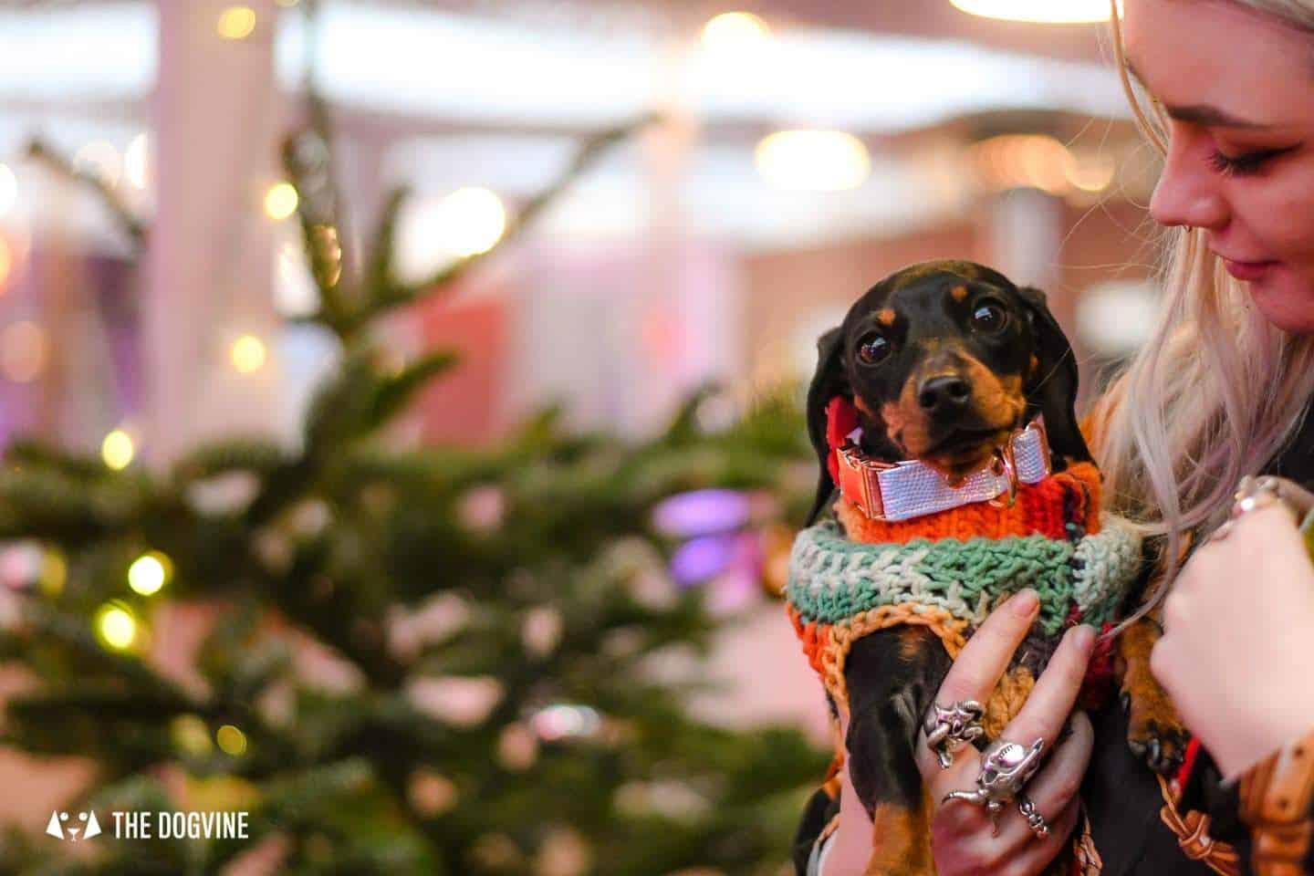London Christmas Markets that welcome dogs