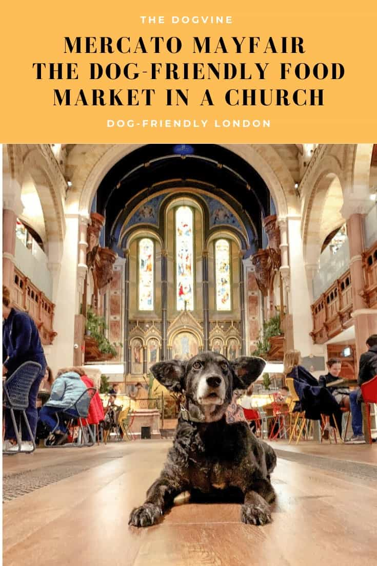 Mercato Mayfair - The Dog-friendly Food Market in a Church