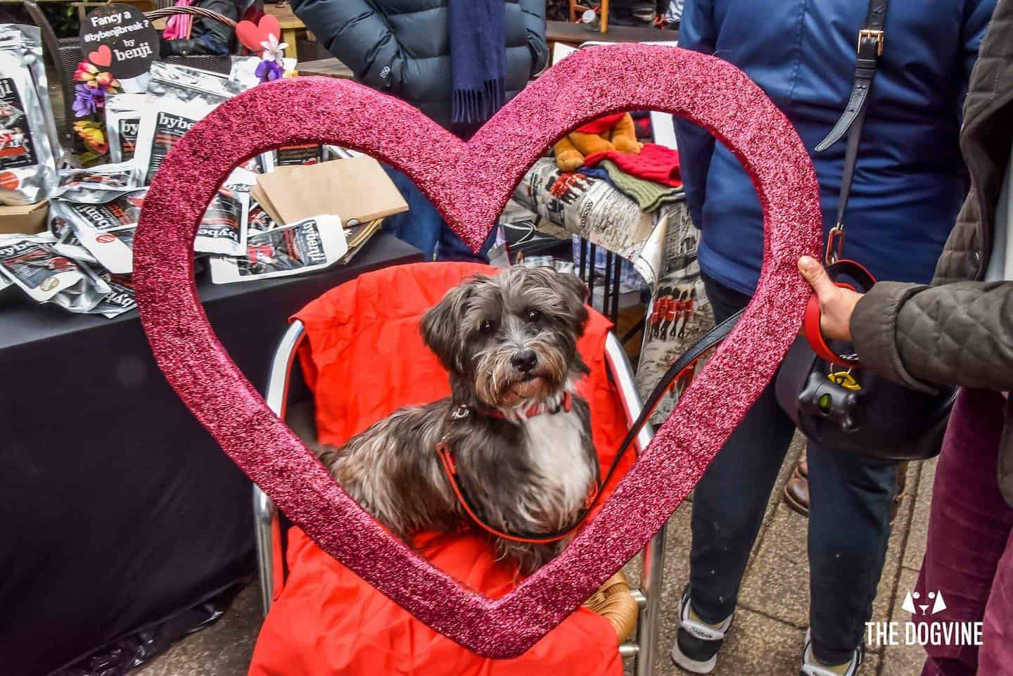 All Dogs Matter Valentines Walk 2020