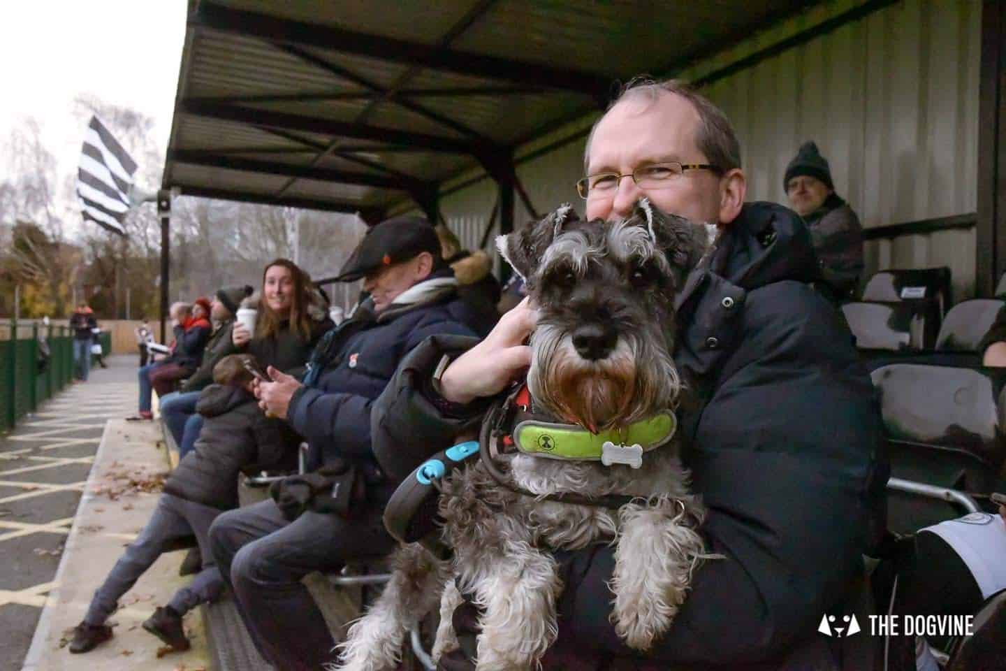 Dog-friendly Football Teams in London 22