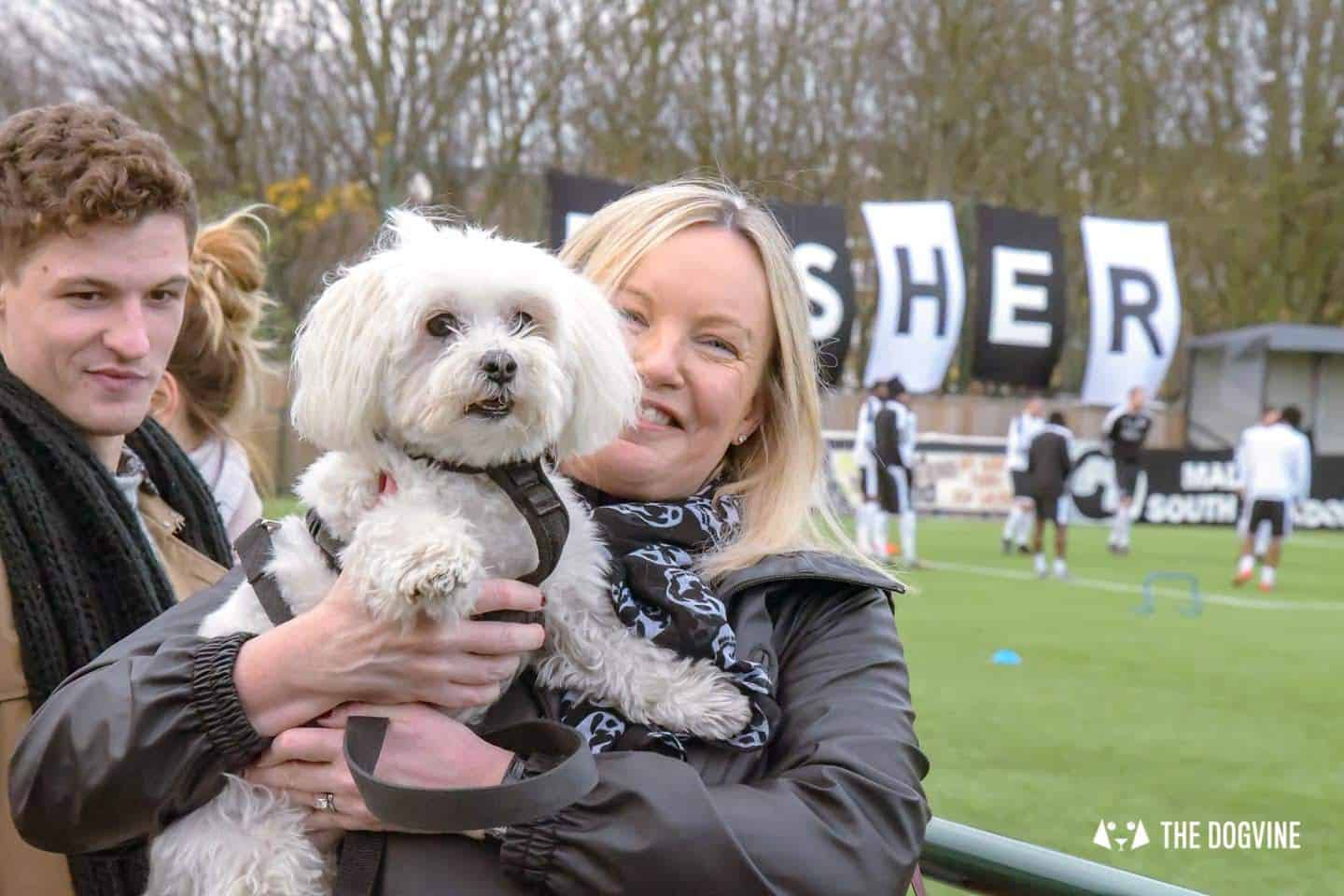 Dog-friendly Football Teams in London - Vinnie from PAAW House