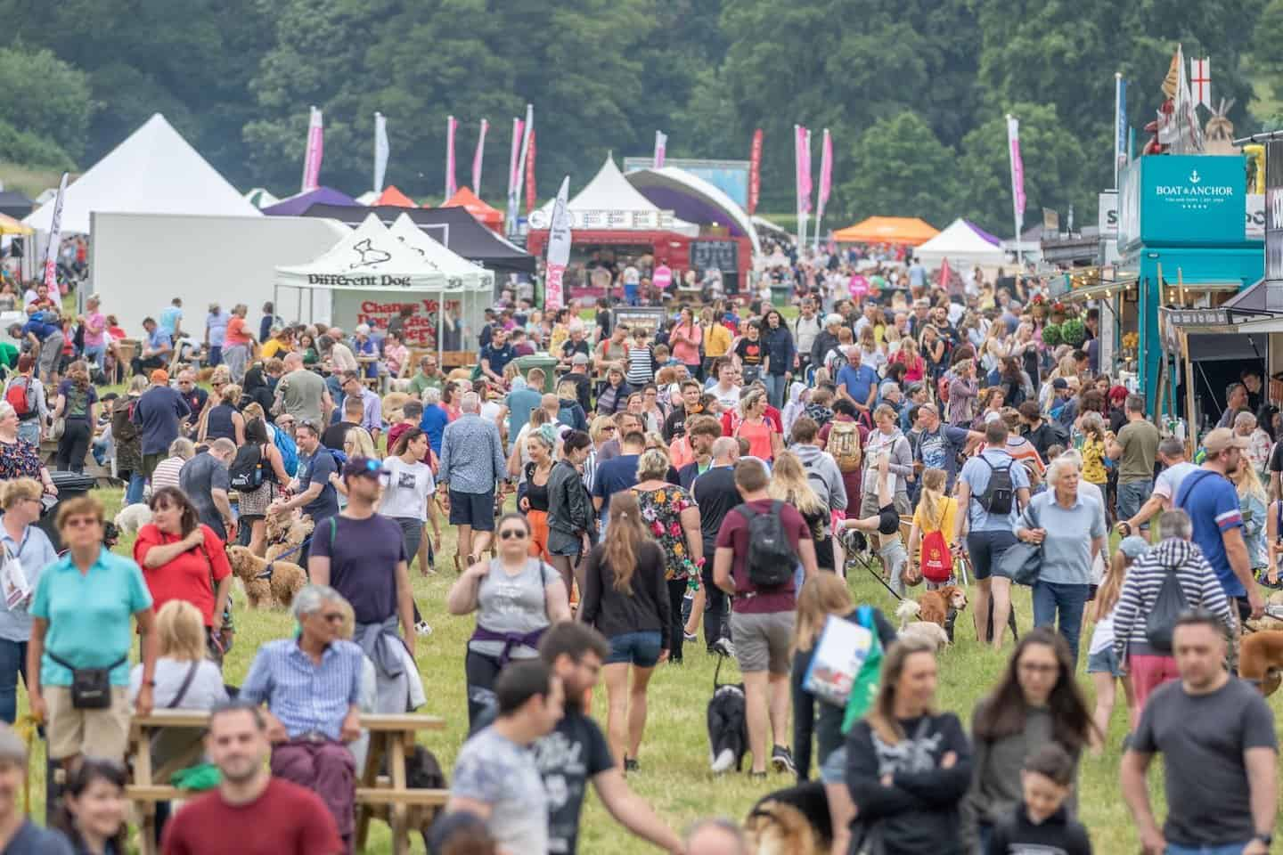 DogFest South 2020 at Knebworth House