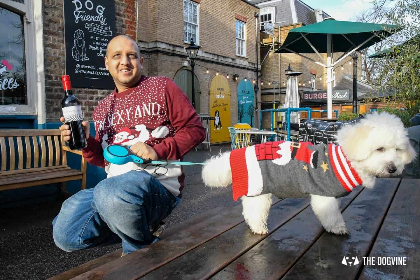 London Dogs In Christmas Jumpers At The Windmill Clapham 29