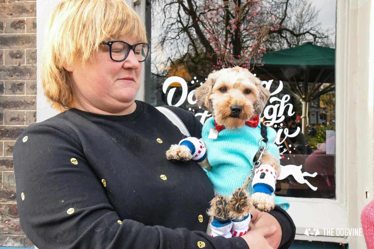London Dogs In Christmas Jumpers At The Windmill Clapham 35