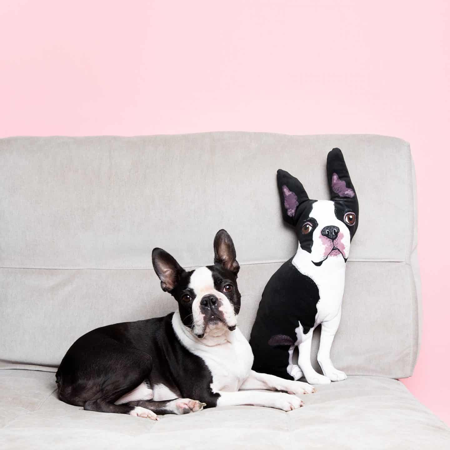 The Best Personalised Pet Gifts For Dog Owners - Customised Pet Pillows from Helen Penny