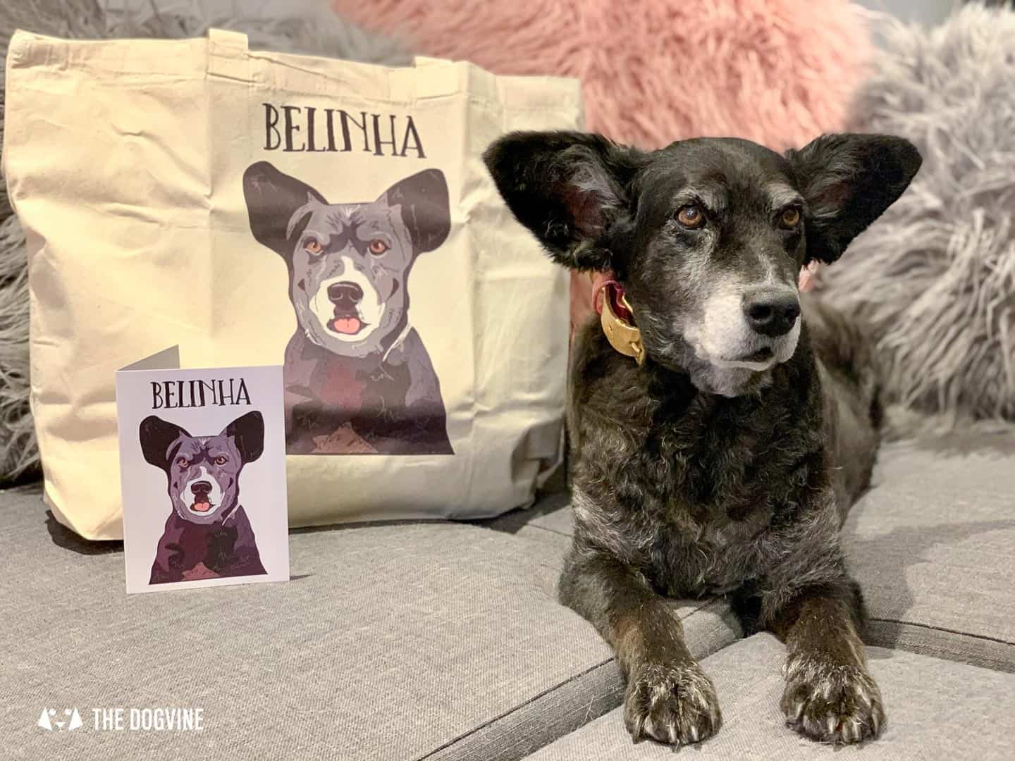 The Best Personalised Pet Gifts For Dog Owners - Peture Perfect