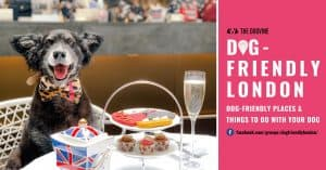 Dog-friendly London Facebook Group Cover