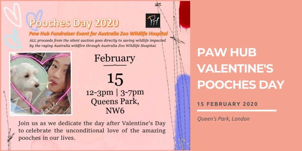 Paw Hub Valentine's Pooches Day