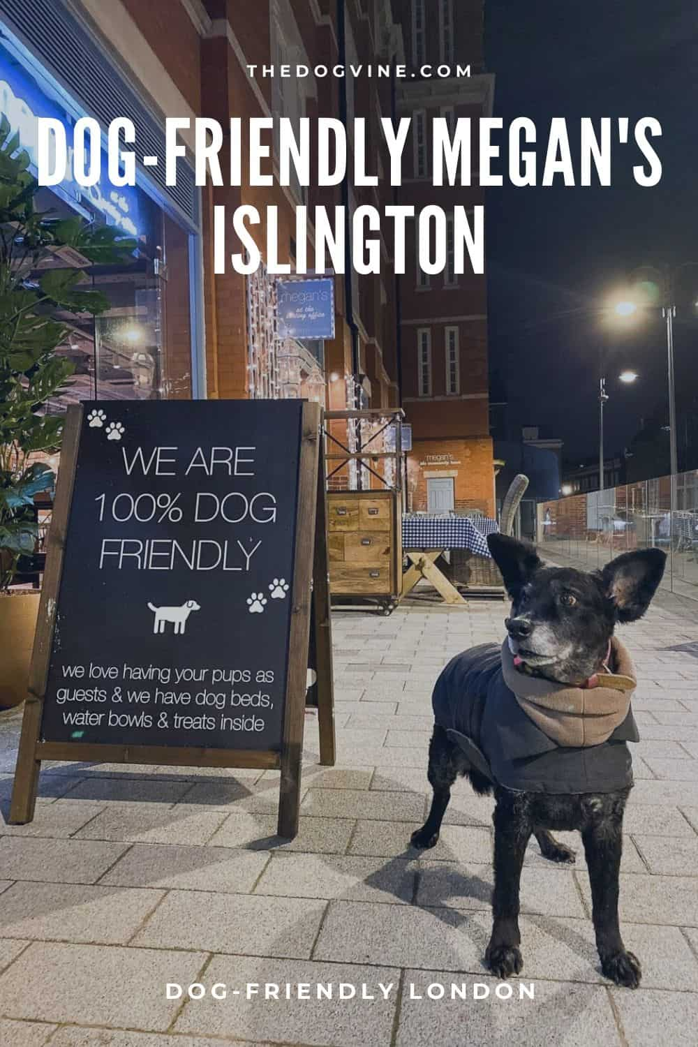 Dog-friendly Megan's Islington - Dog-friendly London