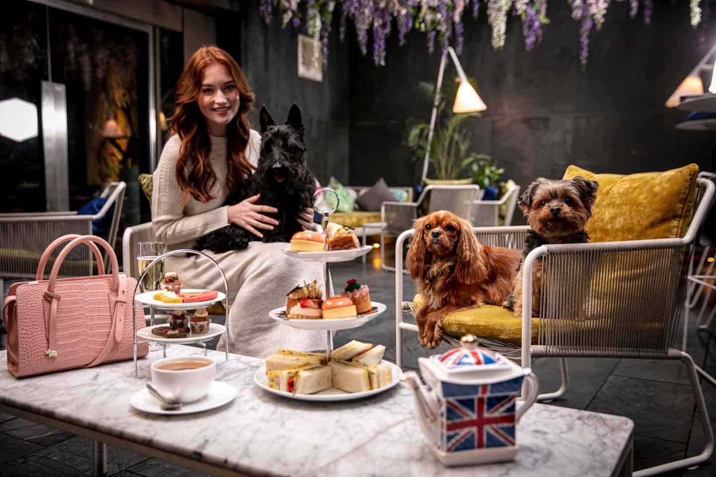 Dog-friendly Radley Afternoon Tea South Place Hotel