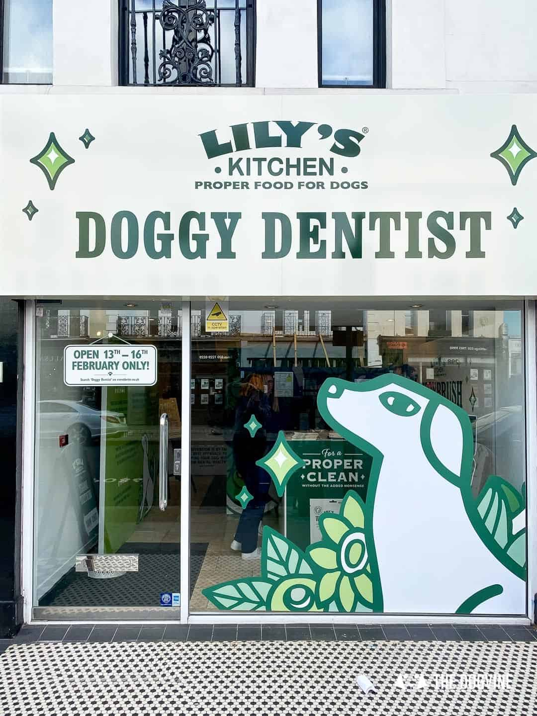 Lily's Kitchen Doggy Dentist Hollywoof Smile 41