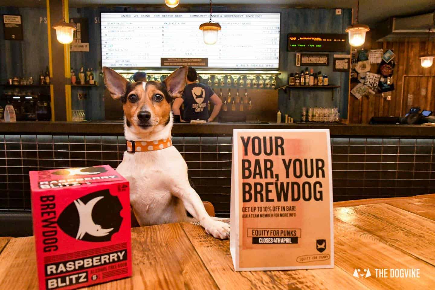 Dog-friendly Canary Wharf and Limehouse - Brewdog 1