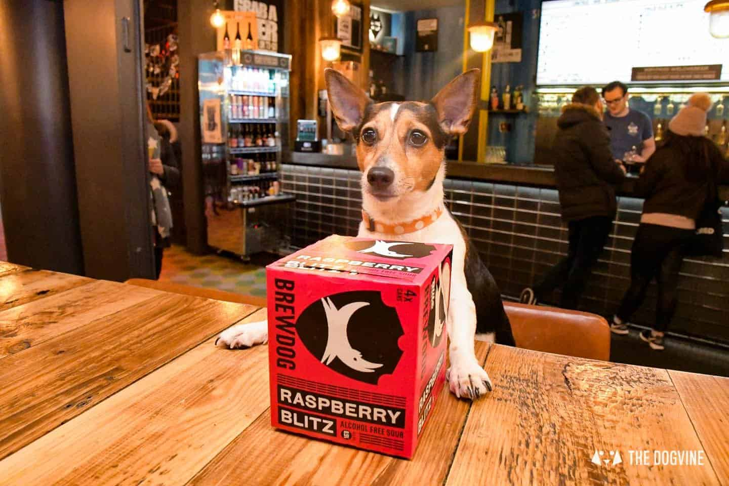 Dog-friendly Canary Wharf and Limehouse - Brewdog 3