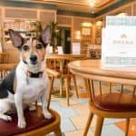 Café Brera Riverside