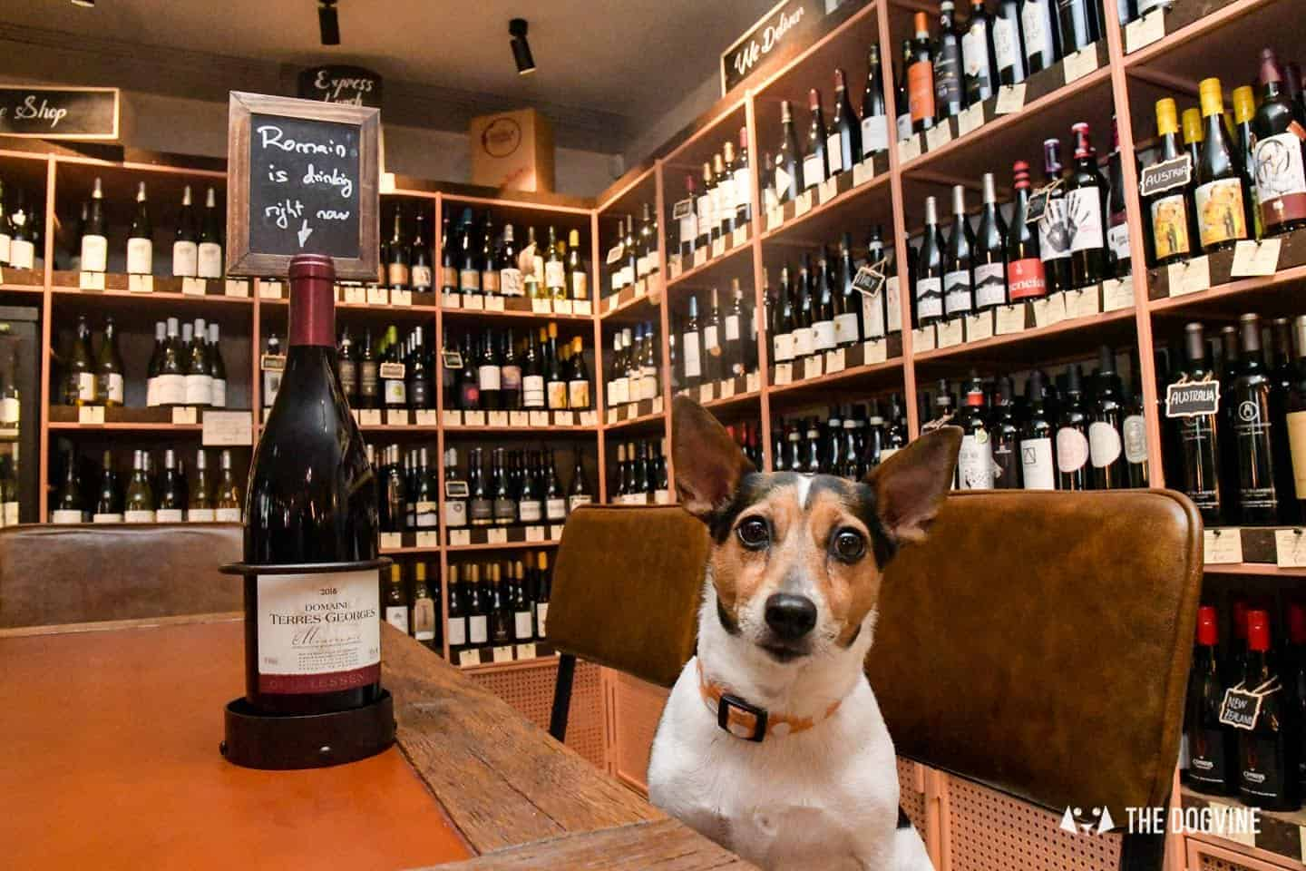 Dog-friendly Canary Wharf and Limehouse - The Humble Grape 3