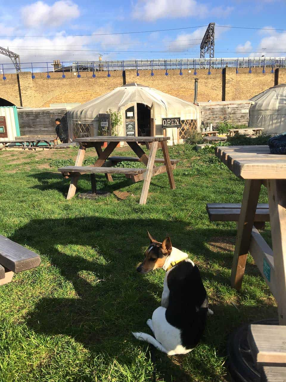 Dog-friendly Canary Wharf and Limehouse - Yurt Café 1