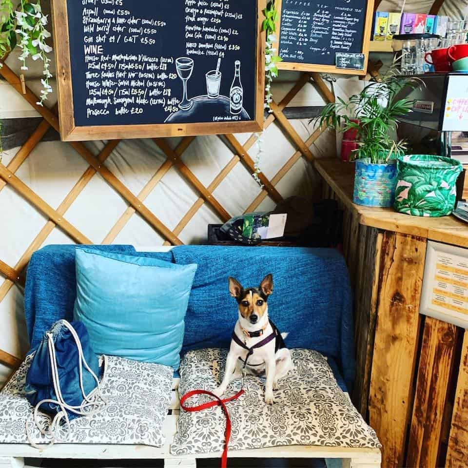 Dog-friendly Canary Wharf and Limehouse - Yurt Café 2
