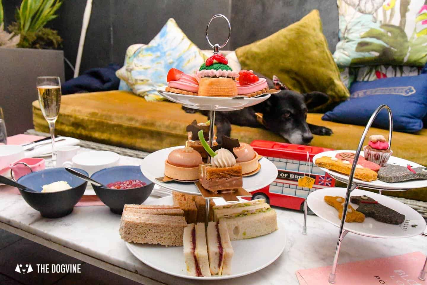 Radley Dog Afternoon Tea South Place Hotel 24