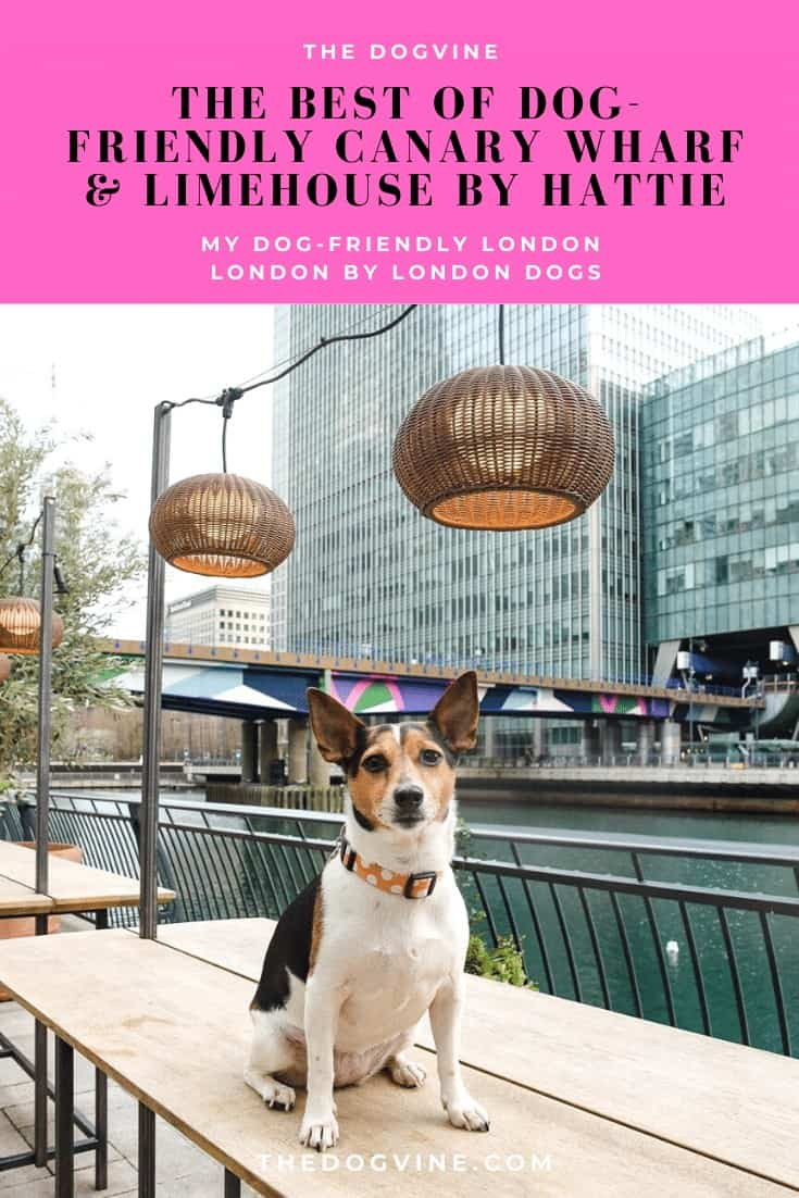 The Best of Dog-friendly Canary Wharf & Limehouse by Hattie