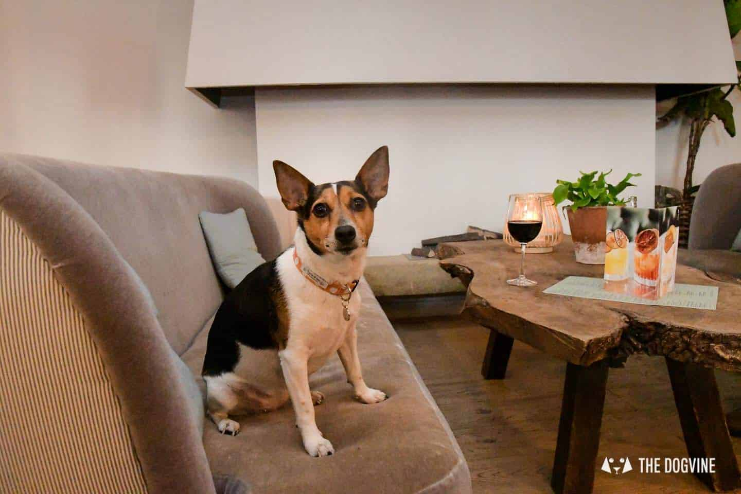 The Best of Dog-friendly Canary Wharf and Limehouse - No. 35 Mackenzie Walk 3