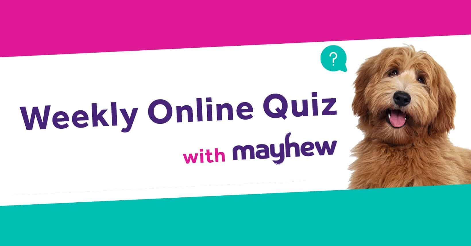 Mayhew Weekly Online Quiz