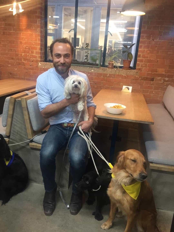 Mr Zipper The Dog About Town - Zipper meets James Middleton