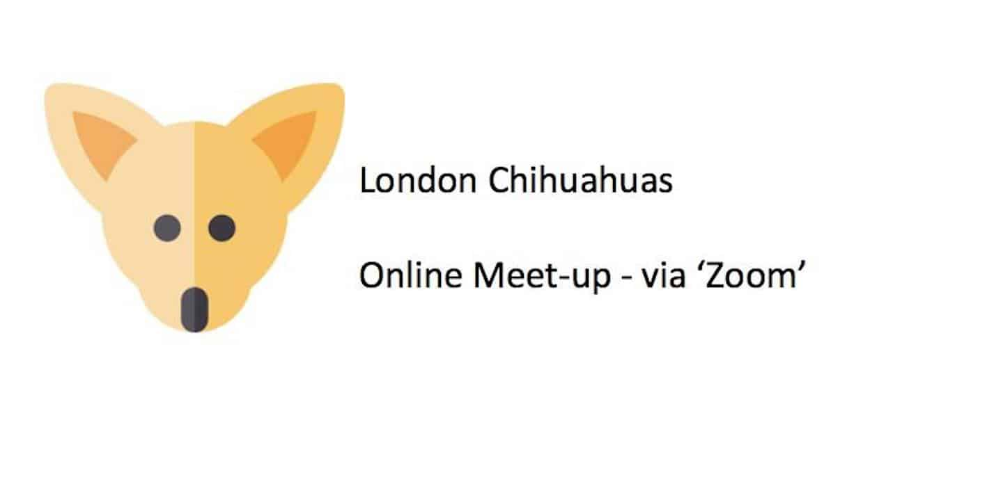 Online London Chihuahuas Meetup