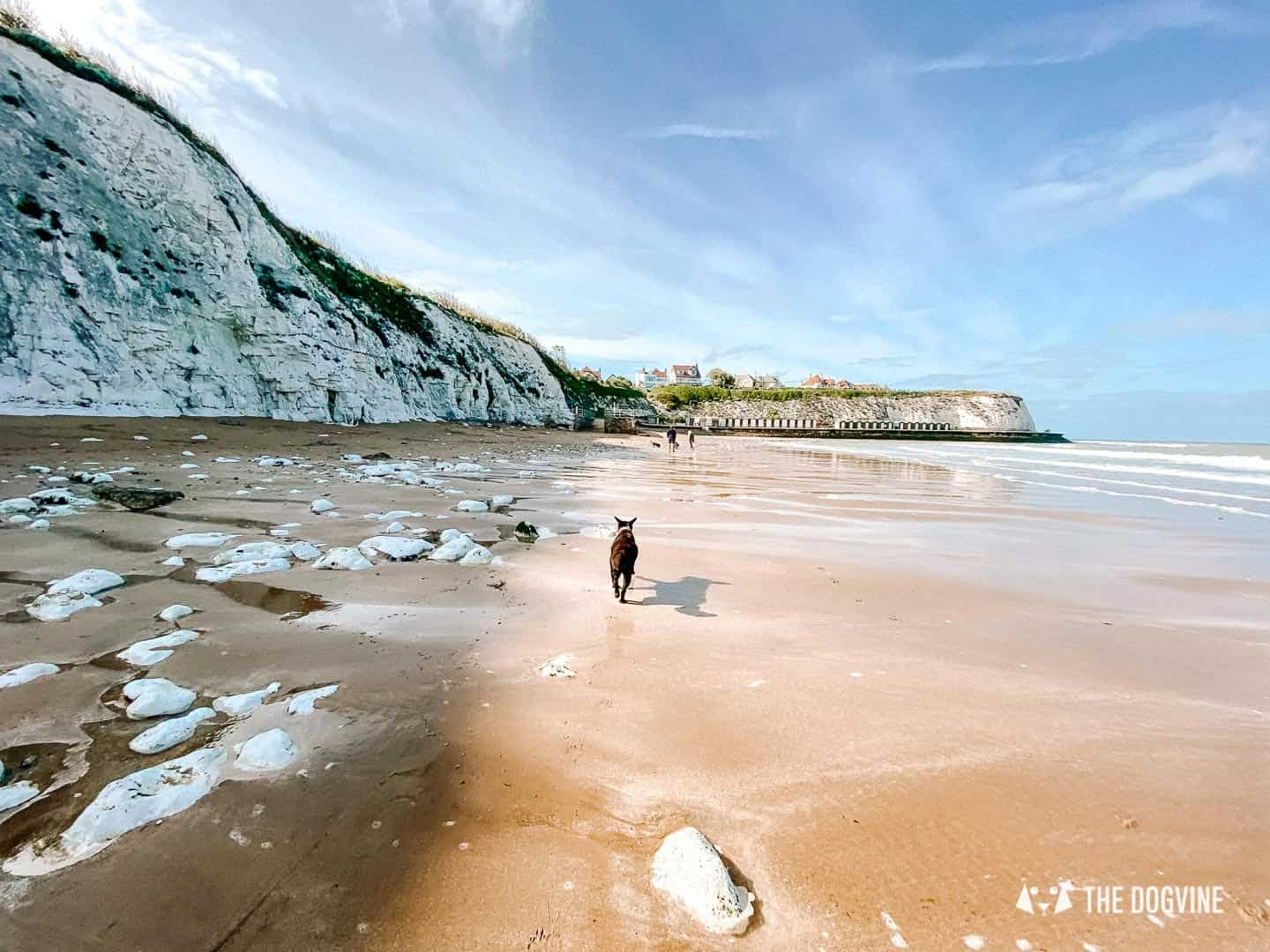 Dumpton Gap - Dog-Friendly Beaches in Kent To Visit With Your Dog