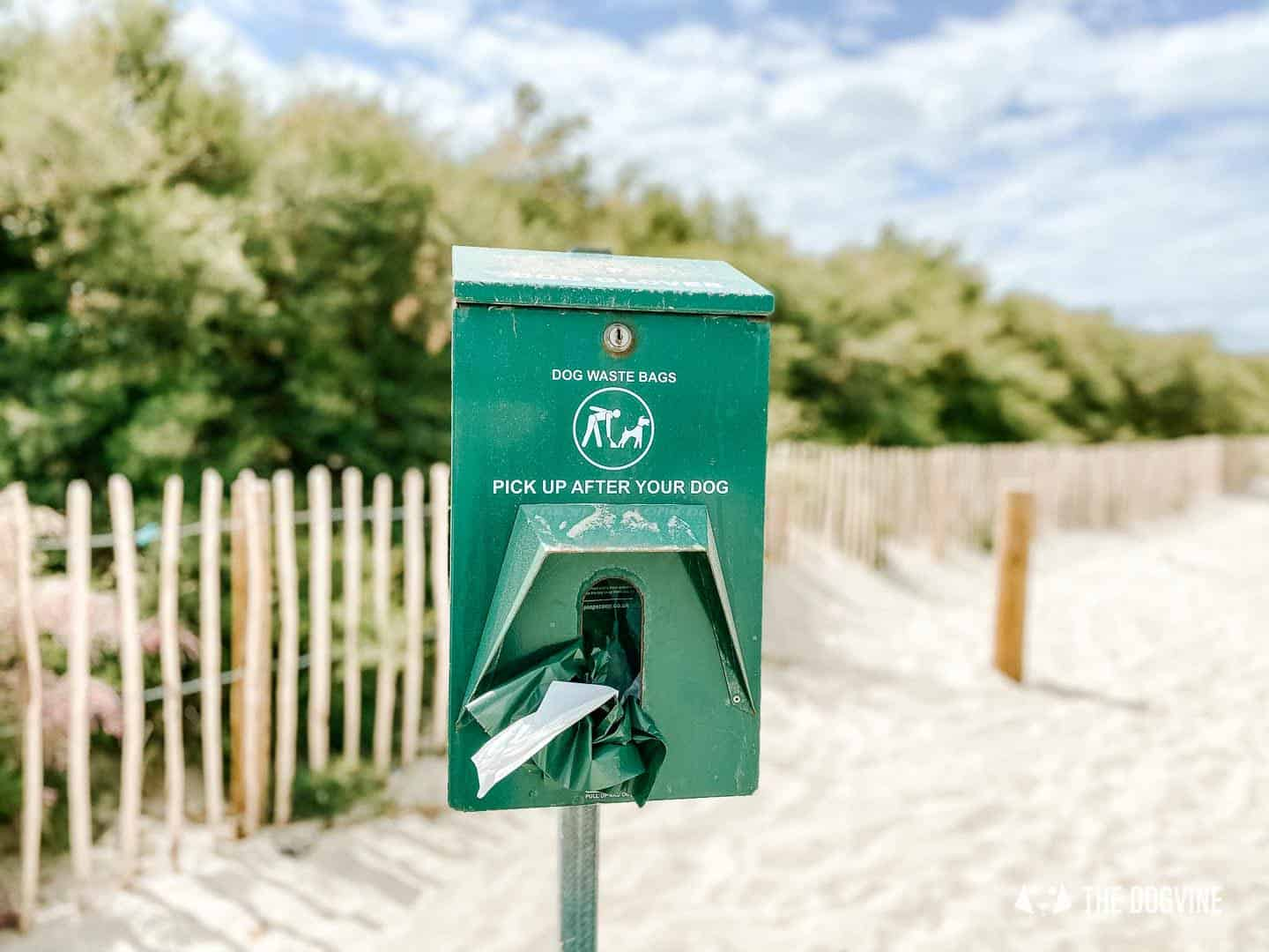 Dog-friendly West Wittering Beach facilities