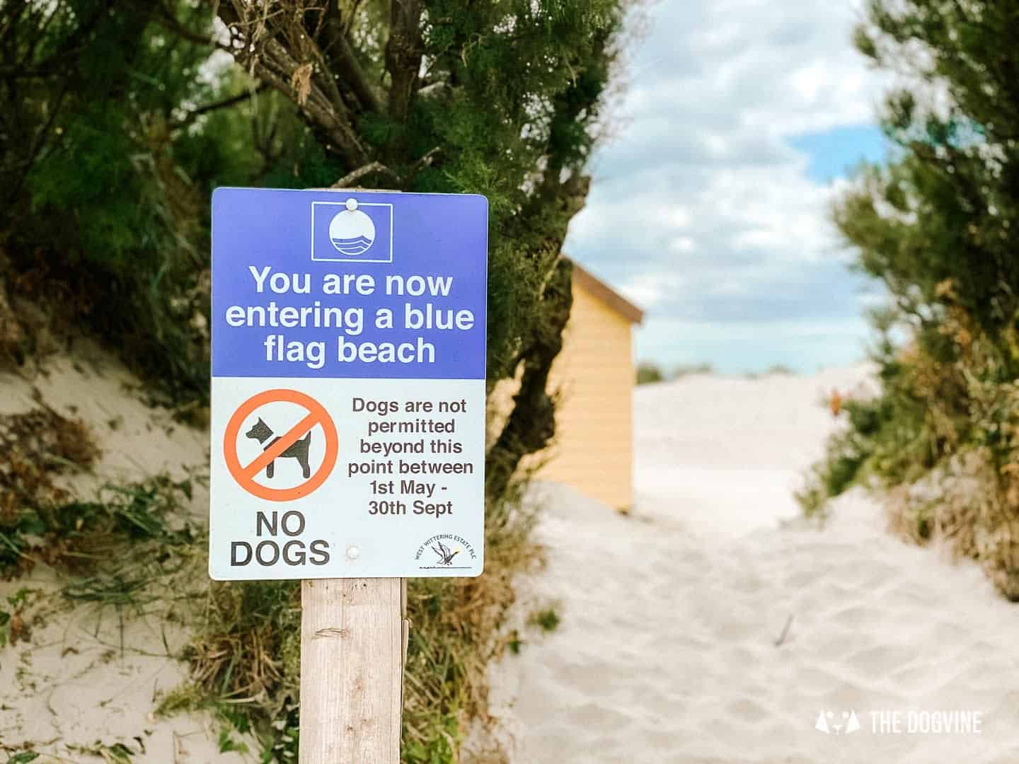 West Wittering Beach dog restrictions