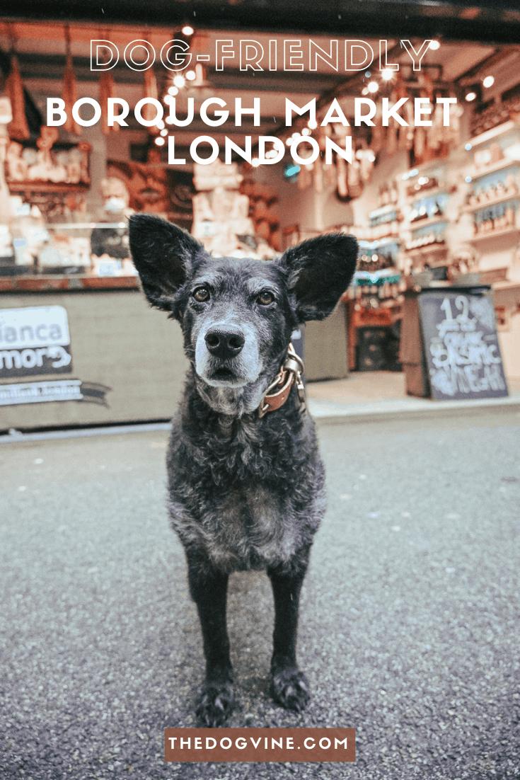 The Dogvine Reviews Dog-friendly Borough Market