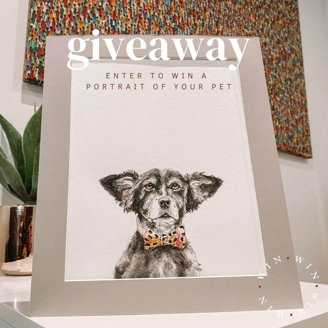 Small Creatures x The Dogvine Giveaway