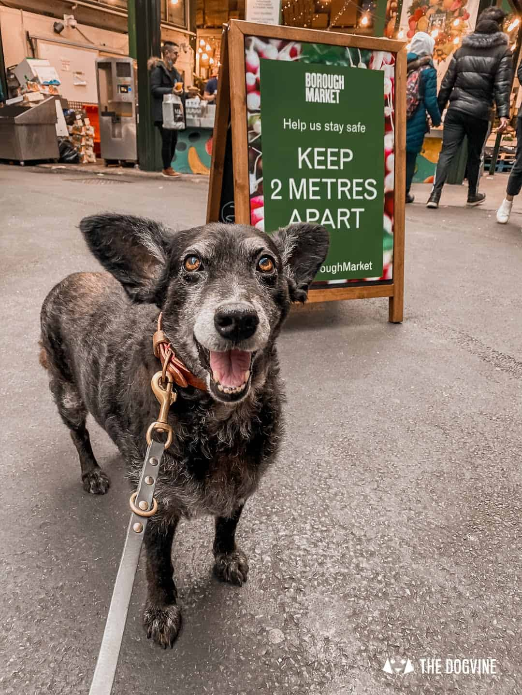 Social Distancing at Borough Market