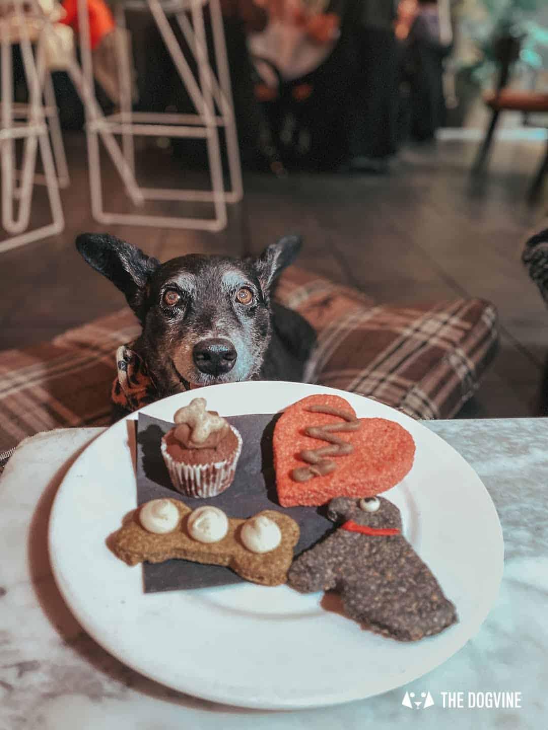Sunday Doggy Menu at South Place Hotel London - Gimme the snacks