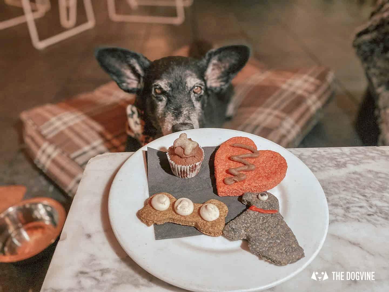 Sunday Snacks At Dog-friendly South Place Hotel London.jpg