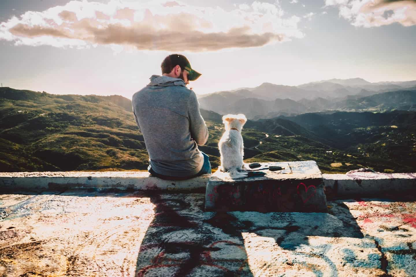 A Dog and Owner enjoying the countryside